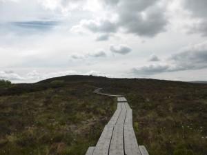 Laois Walking Festival:  Ridge of Capard, Rosenallis @ Rosenallis Community Centre Carpark | Rosenallis | Laois | Ireland