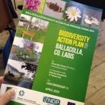 Biodiversity Action Plan for Ballacolla.