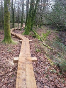 Completed section of boardwalk at Glenbarrow