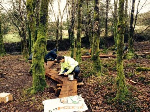 RSS participants putting the finishing touches to a boardwalk at Glenbarrow in the Slieve Blooms